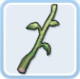 Jungle Dish (2) Mountain Celery