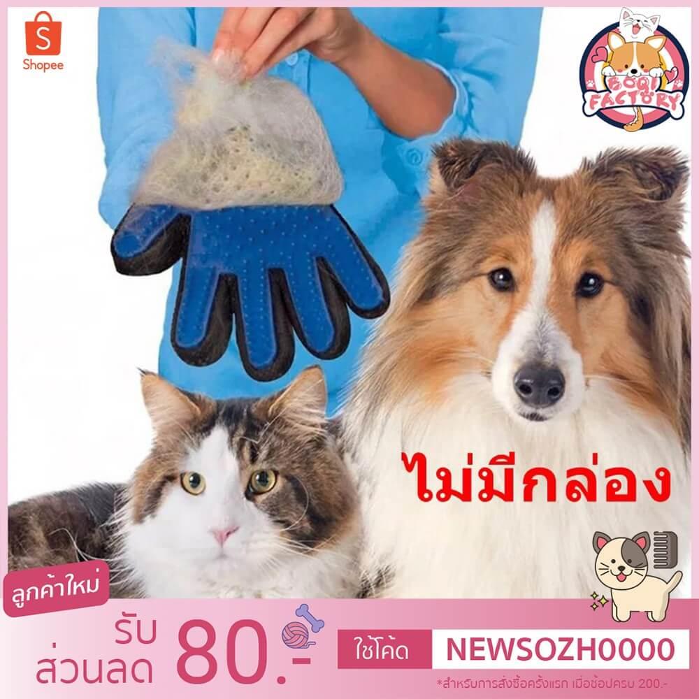 Bogi Factory ถุงมือแปรงขน ถุงมือรูดขนสัตว์ ถุงมือแปรงขนแมว